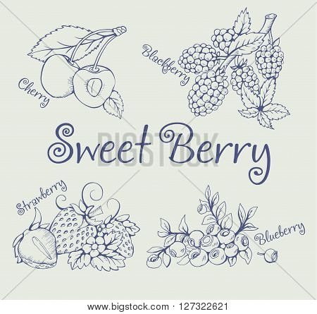Set of blackberry, strawberry, blueberry, cherry. Pictures of the line. This sketch is made with pen and ink. It can be used on the packaging, printing, element menu or another printing production