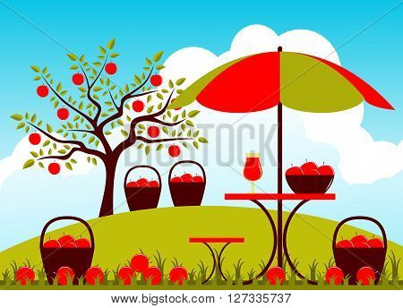 vector baskets of apples and table with umbrella in apple orchard