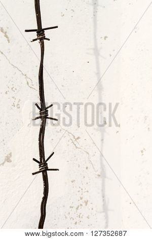 Barbed Wire In Three With White Grunge Background