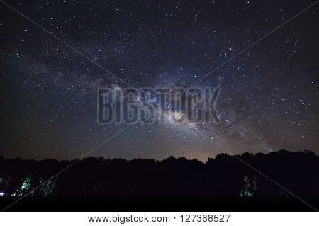 Silhouette of Tree and Milky Way. Long exposure photograph.With grain