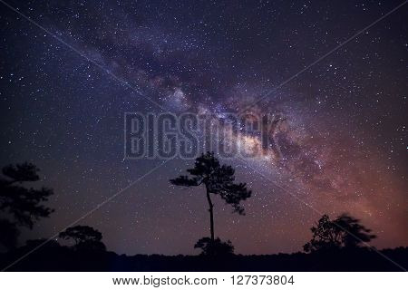 The Milky Way Above The Shadow Of A Tree,long Exposure Photograph, With Grain