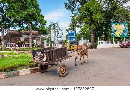 Hell-Ville Madagascar - December 19 2015: Traditional Zebu bull wagon along the street at Hell Ville Nosy Be Island Madagascar.