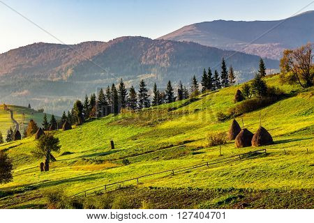 Stack of hay on a green hillside meadow in mountain area at sunrise