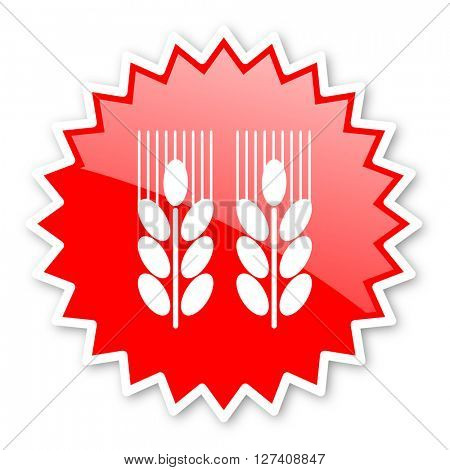 agricultural red tag, sticker, label, star, stamp, banner, advertising, badge, emblem, web icon
