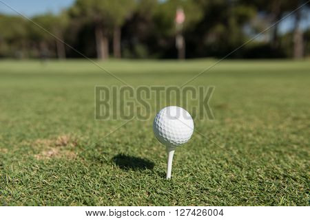 golf ball on tee at beautiful course with fresh green grass