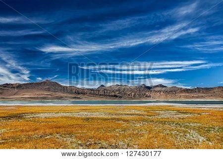 Tso Kar mountain lake in Himalayas. Rapshu,  Ladakh, Jammu and Kashmir, India