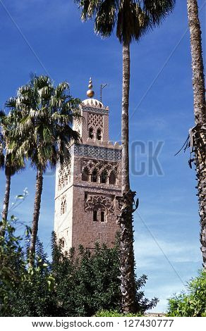 Africa Morocco Marrakesh