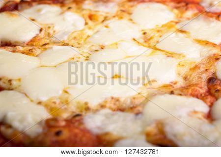 macro pizza tomato, mozzarella, scamorza and olive oil
