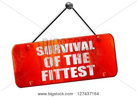 survival of the fittest, 3D rendering, red grunge vintage sign