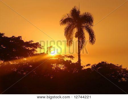 Sunset On Cuba