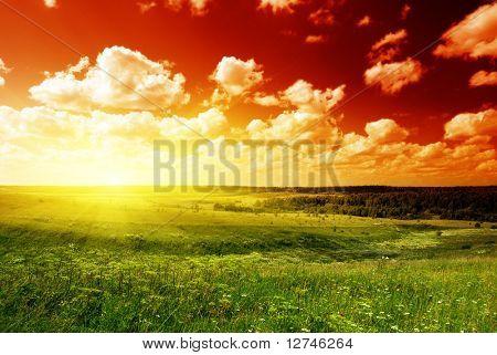 Sommer-Feld Gras und Sonnenuntergang