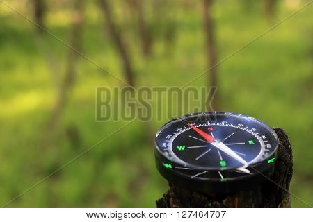 Compass in the wood. The navigation device the specifying azimuth ** Note: Visible grain at 100%, best at smaller sizes