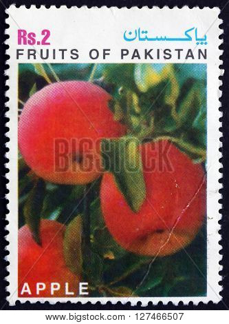 PAKISTAN - CIRCA 1997: a stamp printed in Pakistan shows Apple Fruit of Pakistan circa 1997