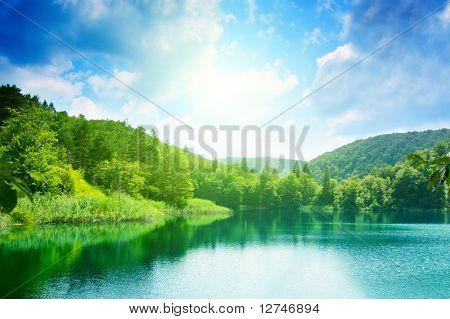 grüne Wasser See im Wald