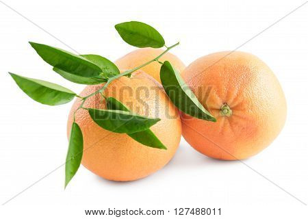 Grapefruits With Leaves And Drops On White Background