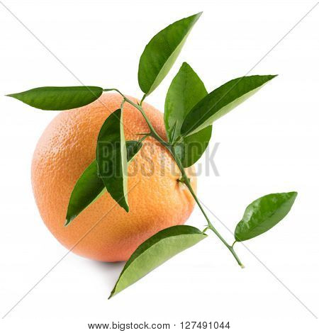 Grapefruit With Leaves And Drops On White Background