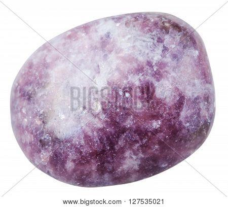 Tumbled Lepidolite Gemstone Isolated On White