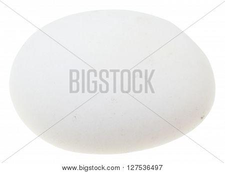 Polished Cacholong (white Opal) Gemstone Isolated