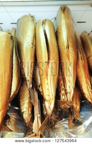 smocked norvegian fish mackerel on plate on market