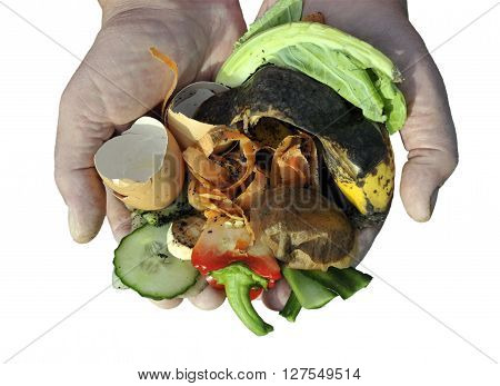 Handling Kitchen food and garden vegetable waste materials for home recycling via composting. Isolated image.