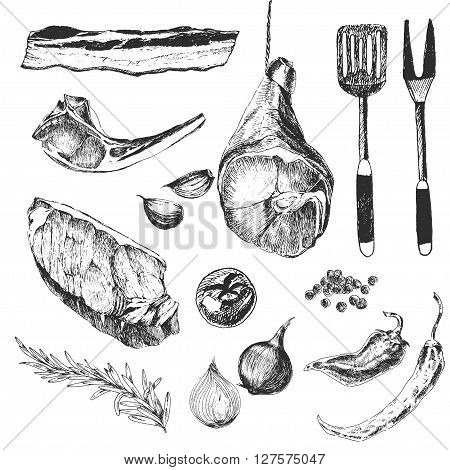 vector meat steak sketch drawing designer templates. lamb rib, parma ham, sirloin steak