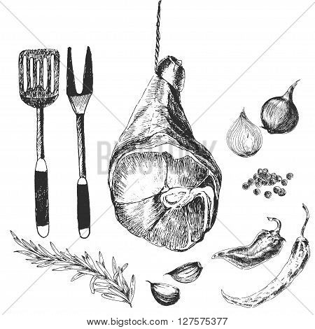 vector meat steak sketch drawings designer template. hand drawn parma ham for grill and barbecue