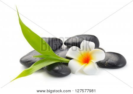 zen basalt stones ,frangipani and bamboo isolated on white
