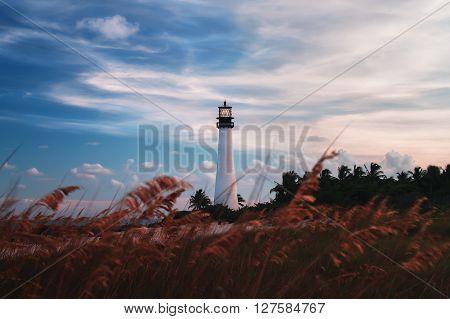 Lighthouse in Key Biscayne, Miami, Florida, Usa