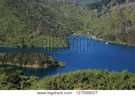 Blue ocean and green hills. Beautiful landscape in New Zealand. Scene on the Queen Charlotte Track.