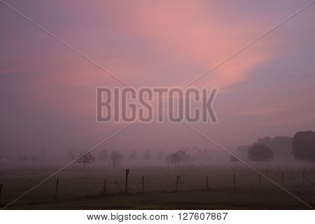 Early morning sunrise with thick fog diffuses the light