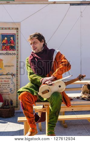 Medieval Troubadour In Arroyomolinos