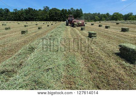 Tractor Pulling Baler to Make Fresh Hay Bales