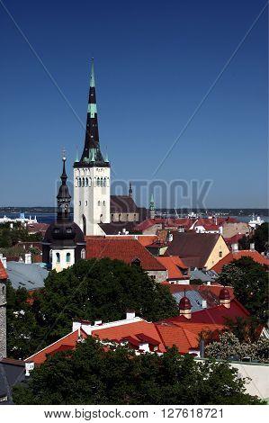 Europe Estonia Tallinn