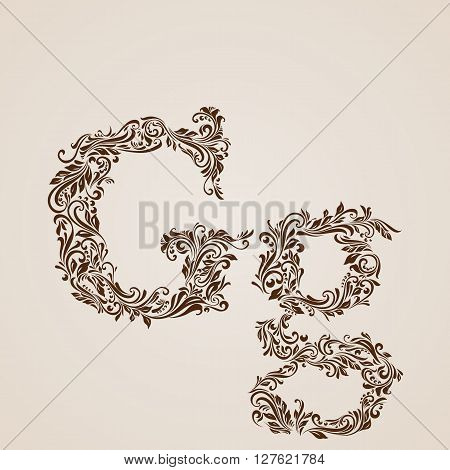 Handsomely decorated letter g in upper and lower case.