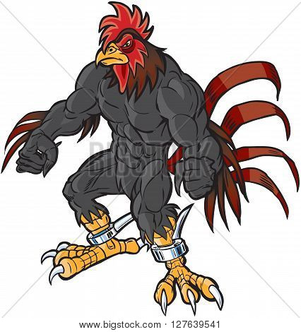 Vector cartoon clip art illustration of an angry muscular rooster or gamecock or chanticleer mascot with spurs and a determined scowl.