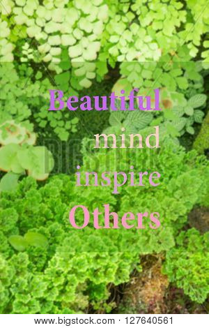 Beautiful mind inspire others. Inspirational quote stock photo