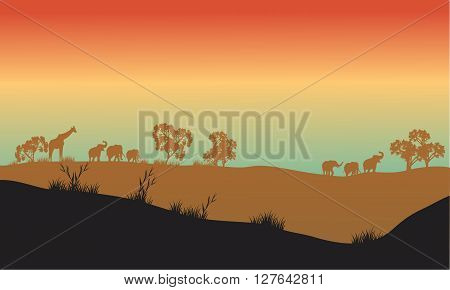 Beautiful scenery in africa park with animal