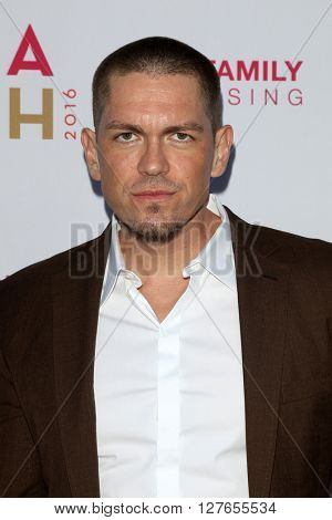 LOS ANGELES - APR 21:  Steve Howey at the LA Family Housing Awards at the The Lot on April 21, 2016 in Los Angeles, CA