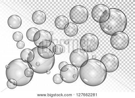 bubbles on transparent background. vector soap water bubbles