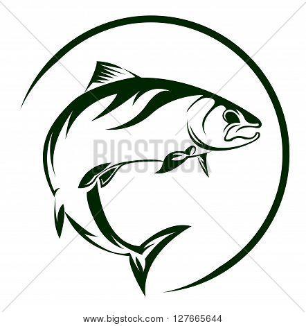 Salmon Fish .eps10 editable vector illustration design