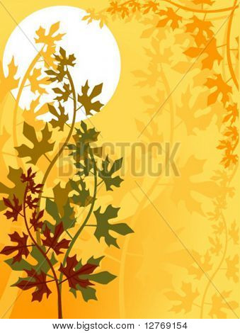 Autumn Leaves - Vector