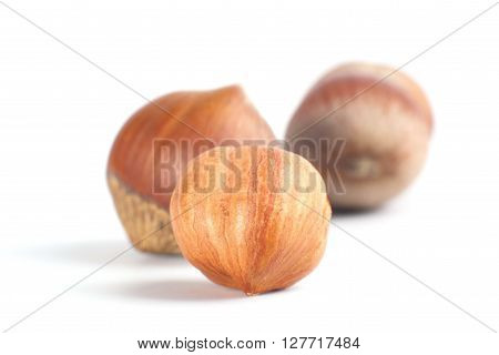 Three Nuts Filberts Isolated On White.