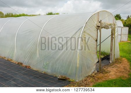 Horticultural polytunnel for growing tender plants protecting them from the elements