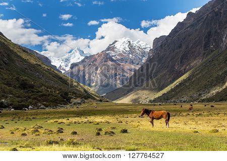 Mountain landscape in the Andes, Peru, Cordiliera Blanca