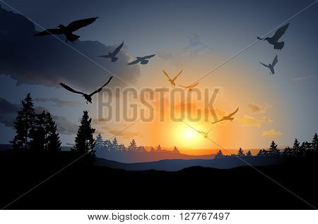 Forest Landscape With Flock Of Flying Bird