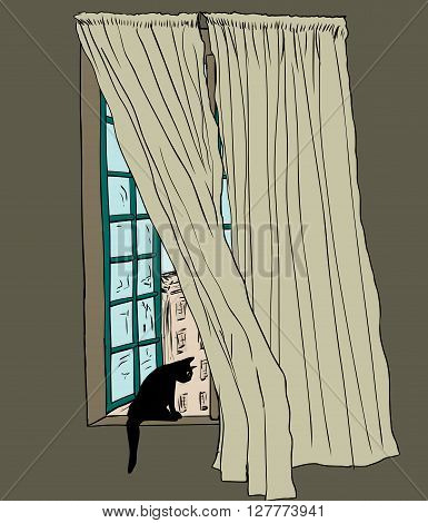 Cat In Stockholm Window With Blowing Drapes
