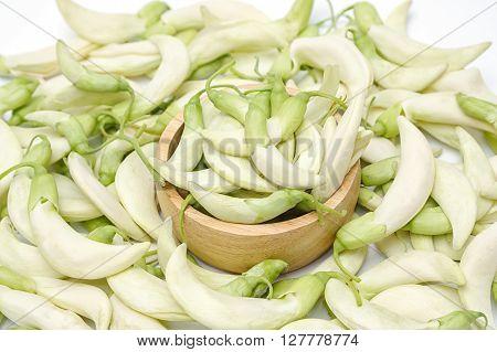 Vegetable Humming Bird Sesban AgastaThai vegetable on white background