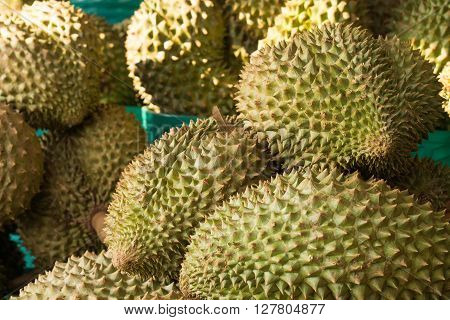Durian fruit in the basket at the fruits market