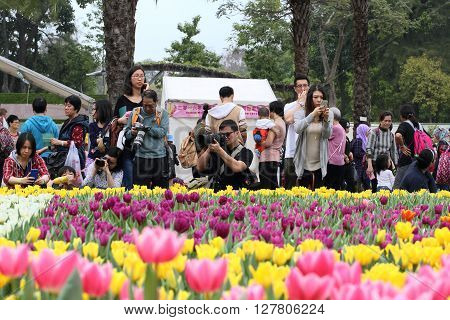 HONG KONG, CHINA - MARCH 11, 2016: Crowds gather at the annual Hong Kong flower show held at Victoria Park on March 11, 2016 in Hong Kong, China.