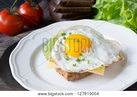 Fried egg, avocado and cheese on toasted bread. Healthy breakfast on a plate